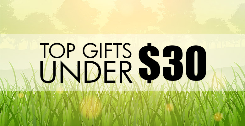 Top Gifts Under $30